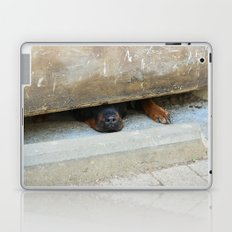 guard dog Laptop & iPad Skin