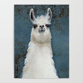 Hello Llama Poster