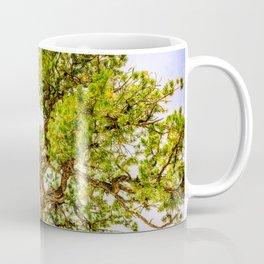 Curly Pine Coffee Mug