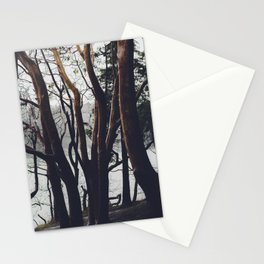 Pacific Madrone Stationery Cards