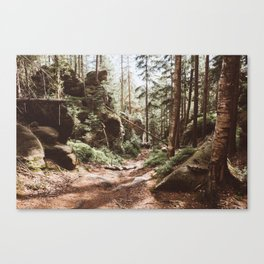 Wild summer - Landscape and Nature Photography Canvas Print