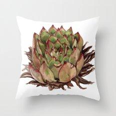 Echeveria Agavoides Throw Pillow