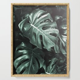 Monstera leaves, Palm Leaf Serving Tray