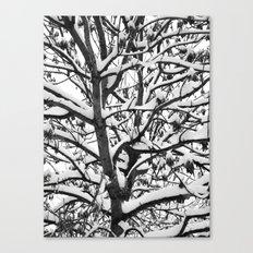 VENAL LIFE Canvas Print