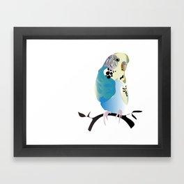 Budgie Love Framed Art Print