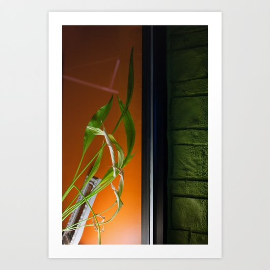 Window Plant Art Print
