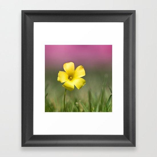 Yellow on Pink Framed Art Print