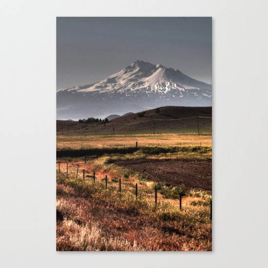 Mt Shasta Canvas Print