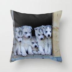 Husky puppies Throw Pillow