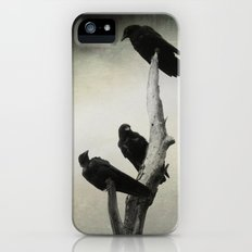 3 Crows Slim Case iPhone (5, 5s)