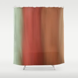 Modern Artsy Mint Green Coral Colorblock Brushstrokes Shower Curtain