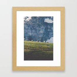 Beartooth Mountain Goats Framed Art Print