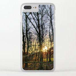 Morning Sun Through the Trees Clear iPhone Case