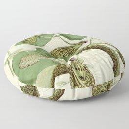 Naturalist Orchids Floor Pillow