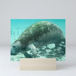 Large  Manatee Mini Art Print