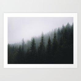 Forests + Fog Art Print