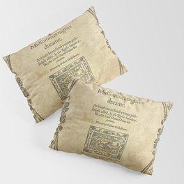 Shakespeare. A midsummer night's dream, 1600 Pillow Sham