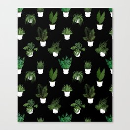 Houseplants Illustration (black background) Canvas Print