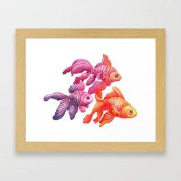 Goldfish Trio Framed Art Print