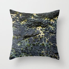 Pitted Seastone Throw Pillow