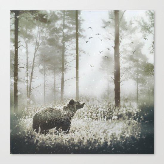 Encounter Canvas Print