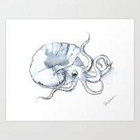 Paper Nautilus, Argonaut Art Print