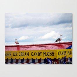Candy Floss Bird Canvas Print