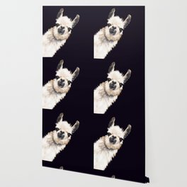 Sneaky Llama in Black Wallpaper