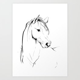 Horse - ink drawing Art Print