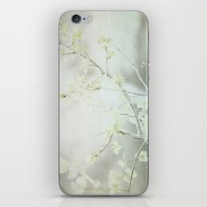 By The Falls iPhone & iPod Skin
