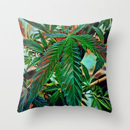 Maui Wowie Throw Pillow