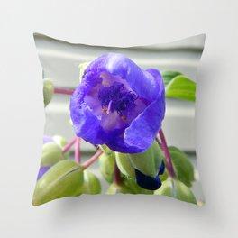 Spiderwort Flower Throw Pillow