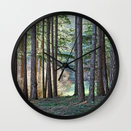 MEADOW LIGHT ON THE FOREST EDGE Wall Clock