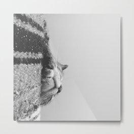 Sleeping Cat in Black and White Metal Print