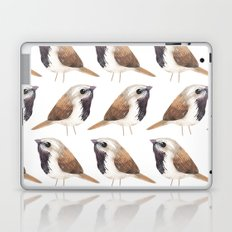 Black Throated Sparrow Laptop & iPad Skin