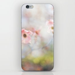 Dogwood Tree 1 iPhone Skin