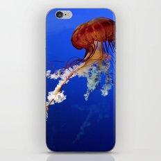Jellyfish 2 iPhone & iPod Skin