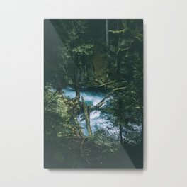 Mckenzie River II Metal Print