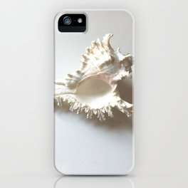 Conch Still Life iPhone Case