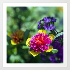 The Colors of Spring Art Print