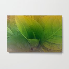 Partridge Plant Metal Print