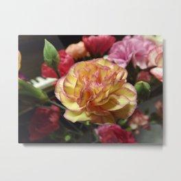 Blushing Petals Metal Print