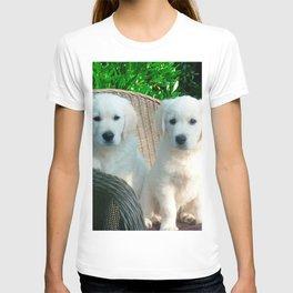 White Golden Retriever Dogs Sitting in Fiber Chair T-shirt