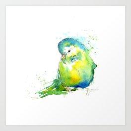 Budgie Series - IV Blue/Green Art Print