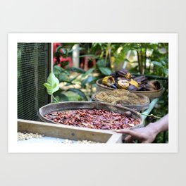 Balinese Spices Art Print