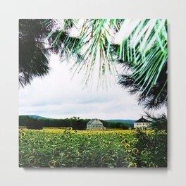 Sunflowers through the Sunset Pines by Jéanpaul Ferro Metal Print
