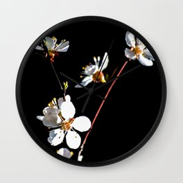 Small Branch Of White Japanese Apricot Blossoms Against The Black Background Wall Clock