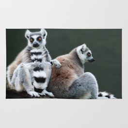 Ring Tailed Lemurs Rug