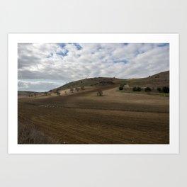 Land worked Art Print