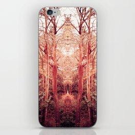 The Ravine Portal iPhone Skin